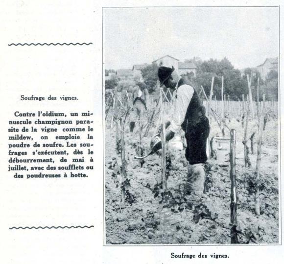 1champagne_1920s-4sulfurage