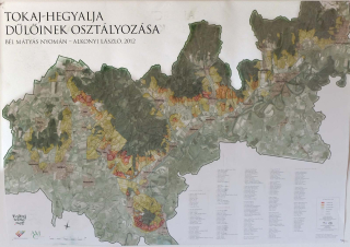 1alkonyi_laszlo_tokaj_classification_map