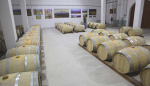 1armenia_wine_factory__barrels_wine