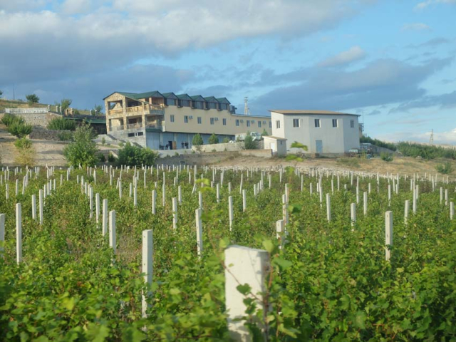 1armas_estate_wine-tourism