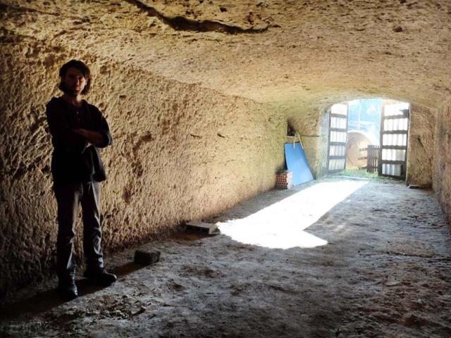 1damien_menut_harvest_barrel_cellar