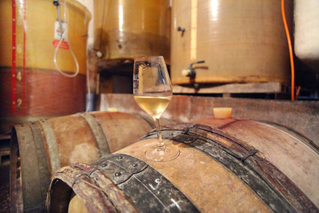 1christophe_foucher_menu_pineau2015_vat