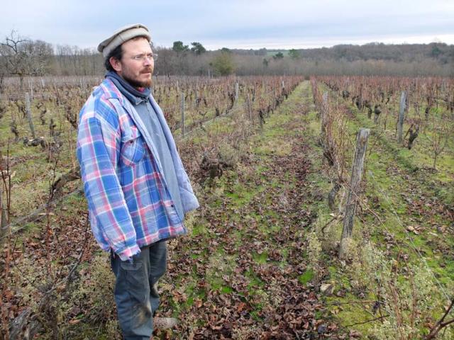 1sylvain_leest_in_the_vineyard