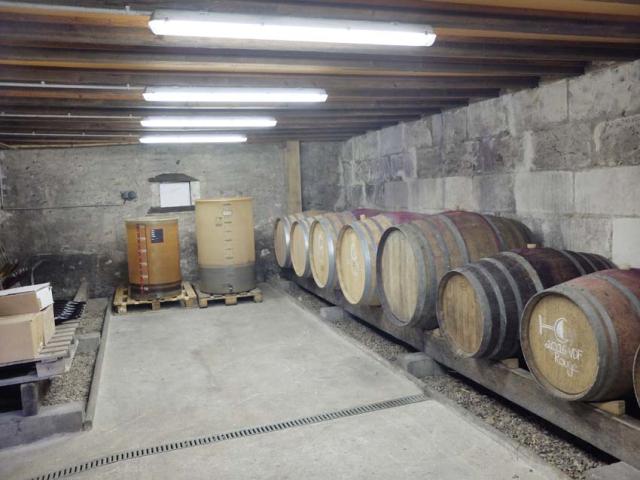 1laurent_saillard_barrel_cellar
