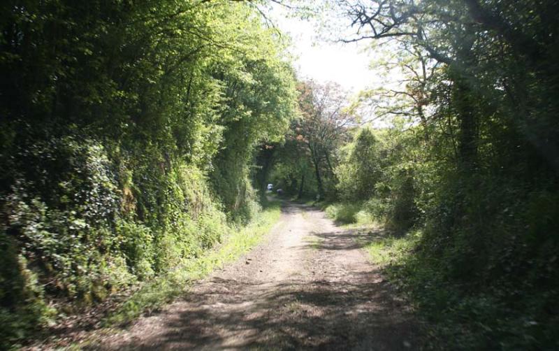 1francois_saint_leger_dirt_road_to_vineyard