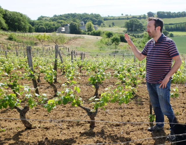 1matthieu_baudry_vineyard