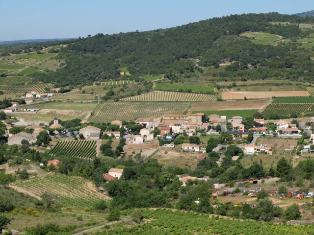 1la_liviniere_vineyards_near_village