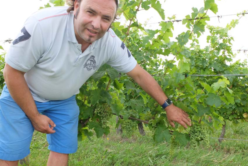 1sebastien_david_showing_grapes