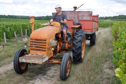 1bruno_allion_vendange17_tracteur