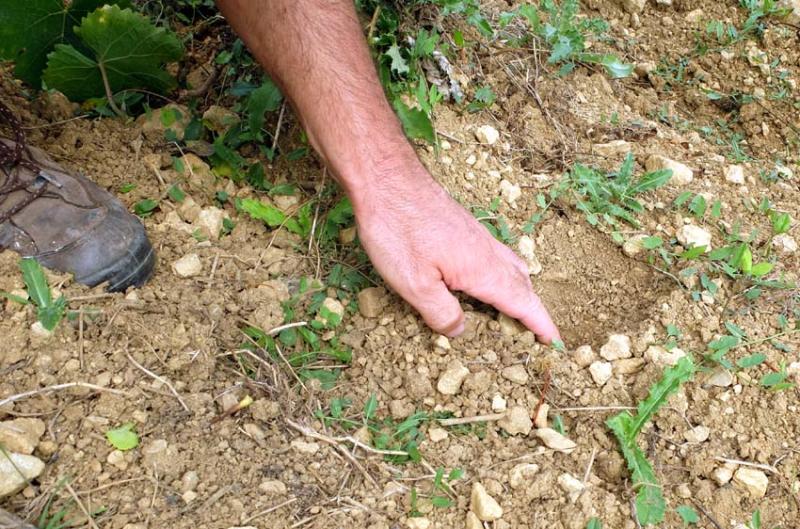 1flavigny_soil_earth