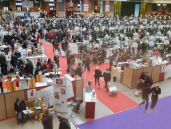 1paris_wine_fair_overview