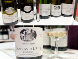 1paris_wine_fair_epire_wines