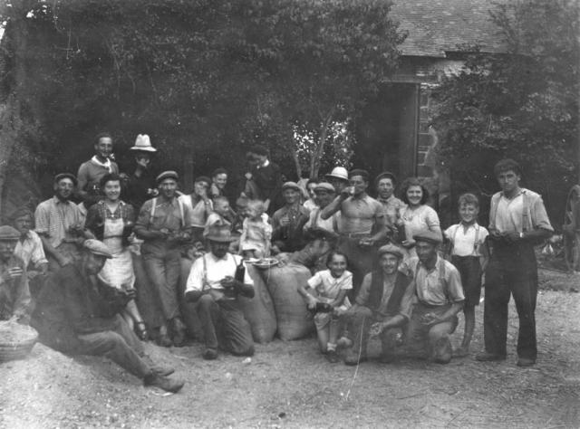 1wine_scenes_farm_workers1936