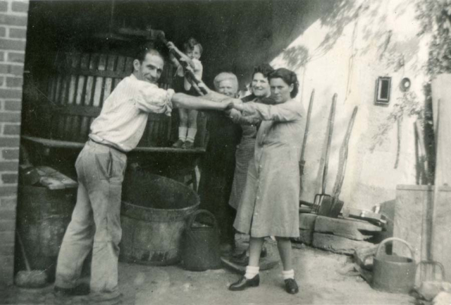 1wine_scenes_harvest_pressing1939