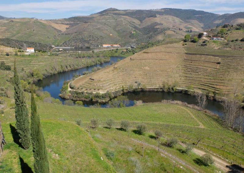 1douro_tributary_to_douro_niepoort