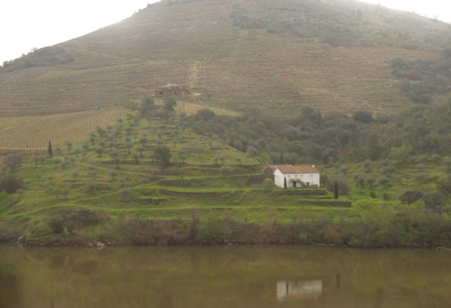 1douro_small_farm