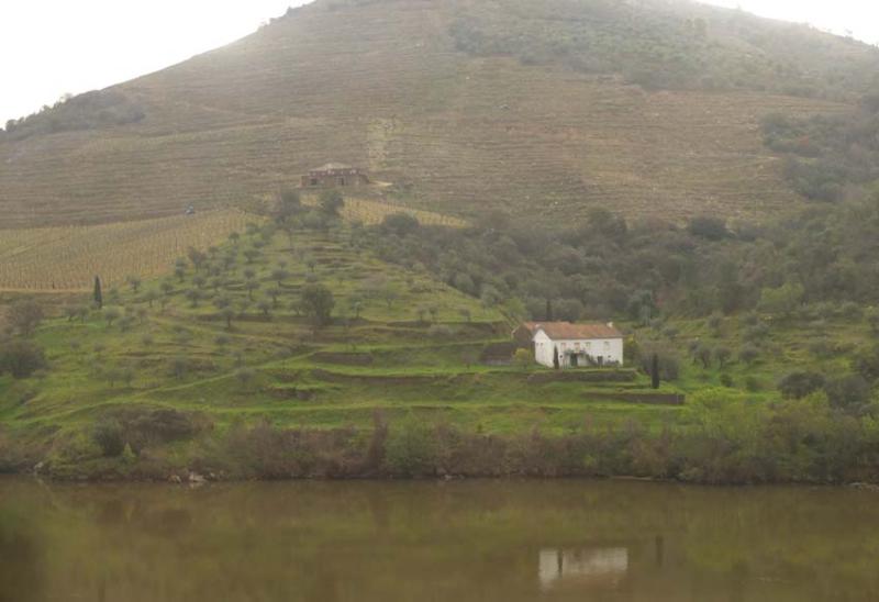 1douro_small_farm