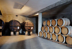 1douro_adega_coop_barrel_surface_cellar