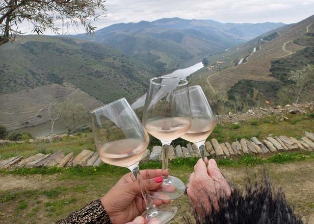 1douro_carm_rose_wine_scenic_background