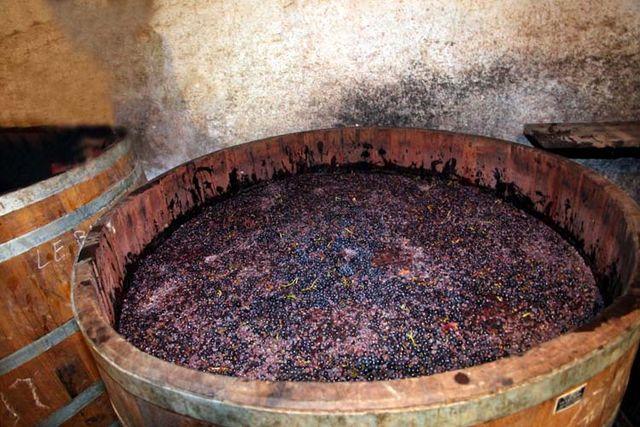1derain_harvest_end_gevrey-chambertin_fermenter