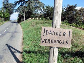 1beaujolais_warning_sign_harvest