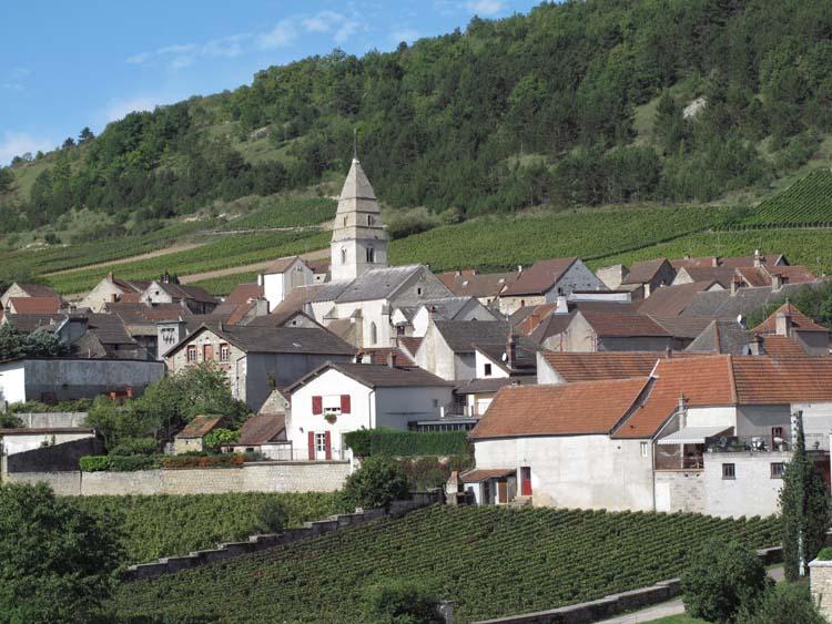 1saint-aubin_burgundy