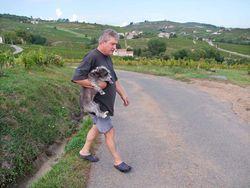 1yvon_metras_dog_crossing_road