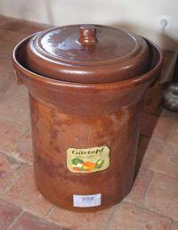 1lacto-fermentation_gaertopf_fermenter