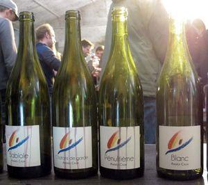 1wein_salon_naturel_andrea_calek_wines