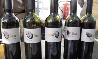 1wein_salon_naturel_cotar_wines_slovenia