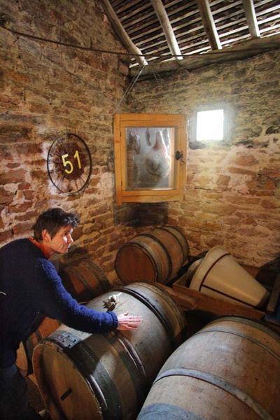 1buronfosse_jura_veil-wines_cask_room
