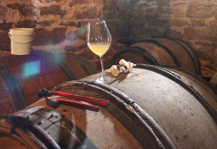 1buronfosse_jura_glass_vin_jaune