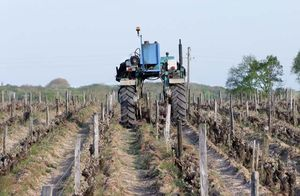 1puzelat_vineyard_work_tractor