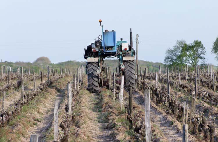 1puzelat_vineyard_work_tractor