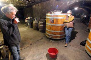 1clos-roche-blanche_didier_cath_cellar