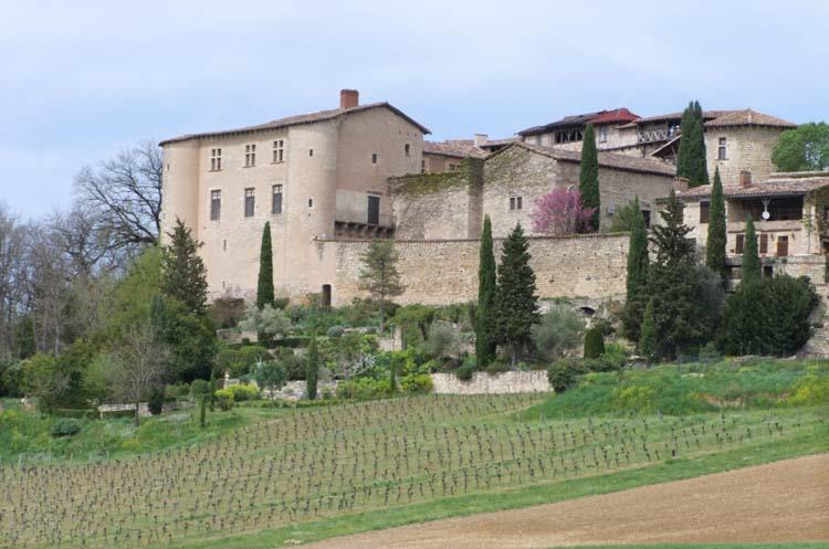 1pplageoles_chateau_vignes