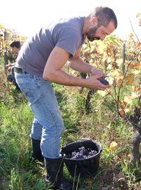 1sebastien_bobine_harvest_at_chaussard