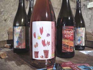 1pet-nat_wine_fair_bruno_allion_petnat_rose