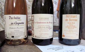 1pet-nat_wine_fair_cyrille_sevin_cuvees