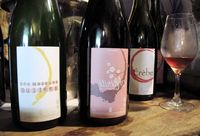 1pet-nat_wine_fair_paul_gillet_cuvees