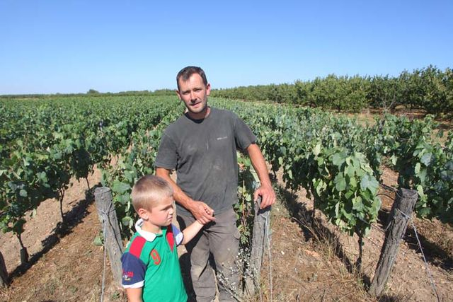 1reynald_heaule_vineyard_son