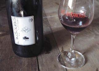 1reynald_heaule_linsoumis_red_bottle