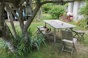 1bruno_allion_garden_table_cat