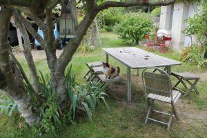 1bruno_allion_garden_table_cat
