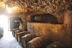 1bruno_allion_cellar2_door