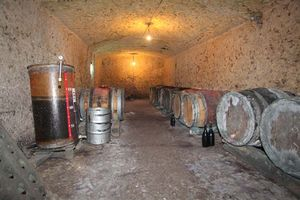 1bruno_allion_cellar2_casks_white_reds