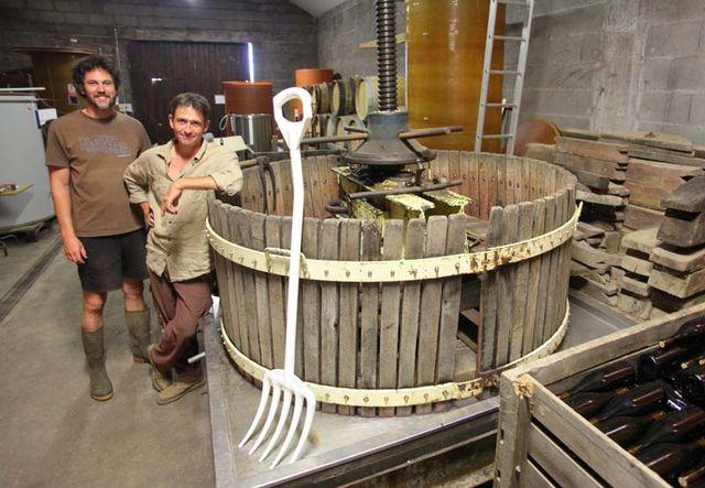 Wine tasting vineyards in france: damien bureau anjou loire