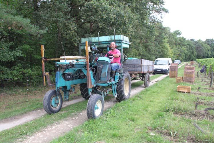 1laurent_saillard_harvest_tractor