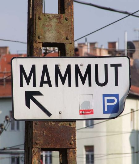 1budapest_buda_mammut