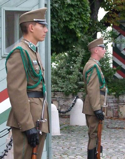 1budapest_buda_the_guard